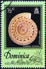 Common sundial (Dominica 1976)