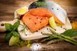salmon - 67341494