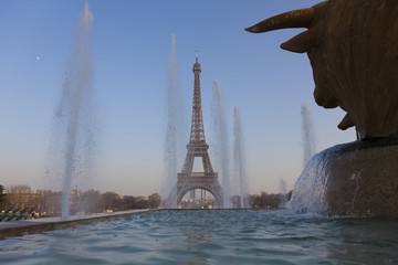 Trocadero gardens and Eiffel tower, Paris, Ile-de-france, France