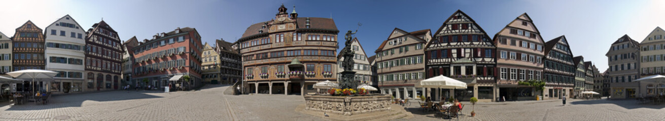 Tübingen Marktplatz Panorama