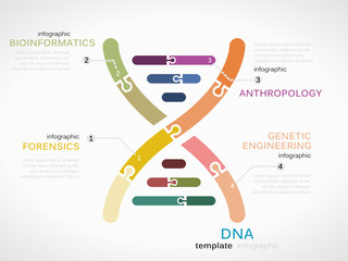DNA concept infographic template with genetic chain