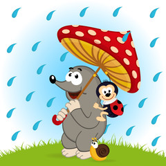 mole ladybug snail rain  - vector  illustration, eps