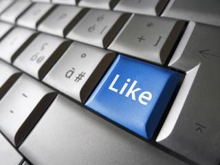 Like Web Social Network Key
