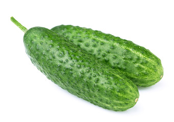 Ripe juicy cucumber