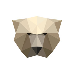 Illustration of polygonal bear portrait