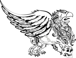 gryphon tattoo isolated0