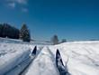 canvas print picture - langlaufski im schnee