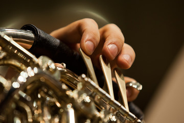 Fingers of a musician playing the French horn