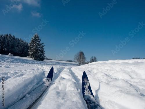 canvas print picture langlaufski im schnee