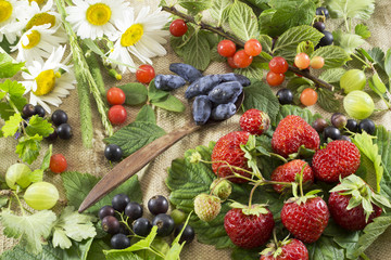 Still life with summer berries in assortment