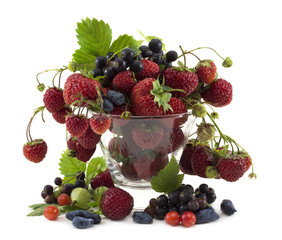 Summer still life with berries in vase 1