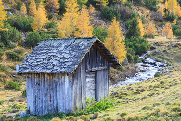 Old weathered shed