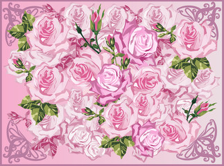 light pink roses background illustration