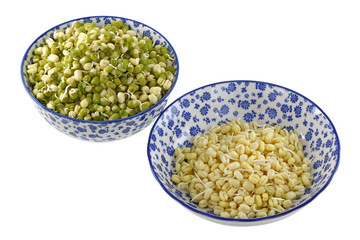 Mung Bean (Green gram) Sprouts with and without green skins