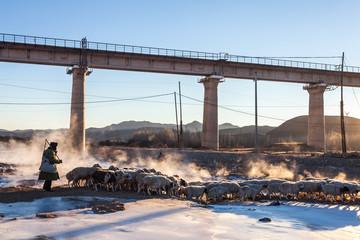Winter in the wilderness of railway bridge