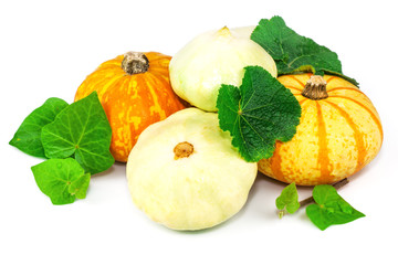 Pumpkin and marrow with leaves