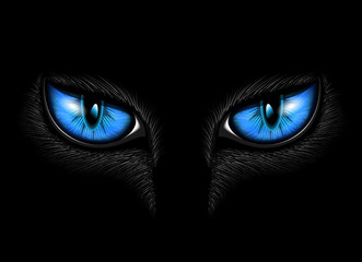 blue cat's eye
