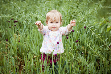 Cute Toddler Girl in the grass