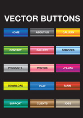Vector Button Illustration Set