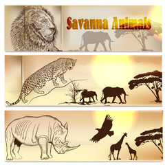 Beautiful backgrounds set with savanna animals