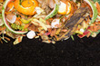 canvas print picture - Compost with composted soil