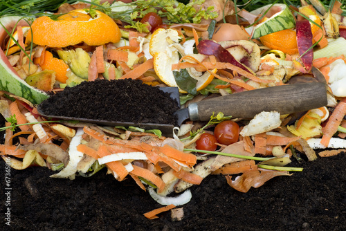 canvas print picture Compost with composted soil
