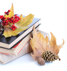Books and autumn leaves isolated on white
