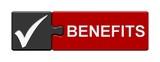 Puzzle-Button schwarz rot: Benefits