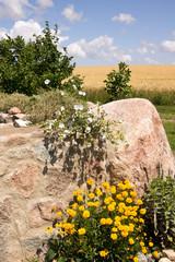 Steinmauer mit Sommerblumen und Weizenfeld