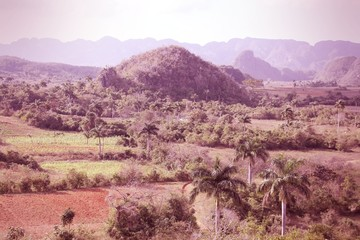 Vinales, Cuba. Cross processed color tone.