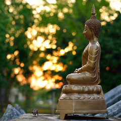 golden buddha statue sculpture with bokeh light background