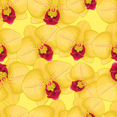 yellow seamless background with yellow orchids