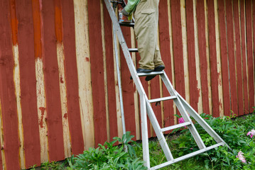 housepainter man on ladder paint garden house wall