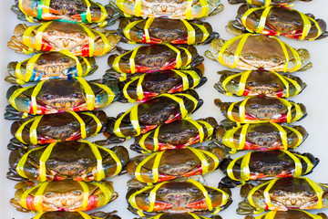 Crab meat bound