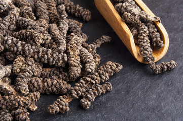 Long pepper on dark background