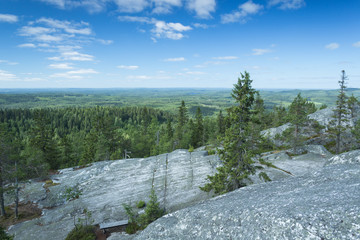 Scenery from Koli national park