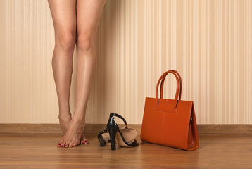 Beautiful female legs, shoes and bag