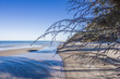 canvas print picture - Weststrand Darss