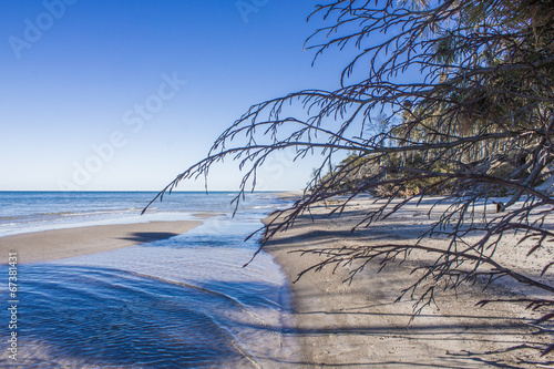 canvas print picture Weststrand Darss