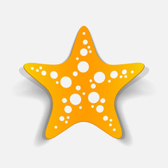 realistic design element: starfish