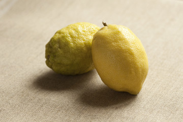 Yellow lemons on table