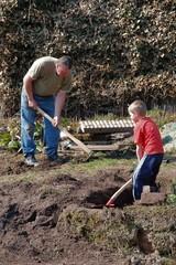 Vater und Sohn beim Graben im Garten