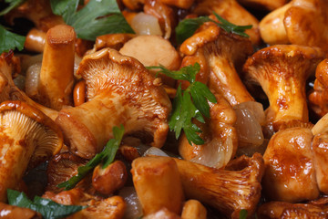 background of roasted chanterelle mushrooms horizontal