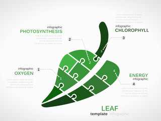 Nature concept infographic template with leaf made