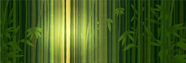 bambù, bamboo, composizione, foglie