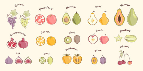 Fruit set in warm colours