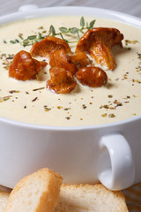 soup with mushrooms and croutons macro vertical