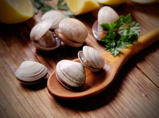vongole sul cucchiaio di legno con prezzemolo e limone