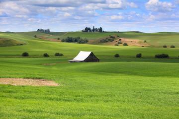 Farm scene in Washington state