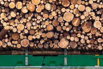Holztransport, Baumstämme, holzverarbeitende Industrie